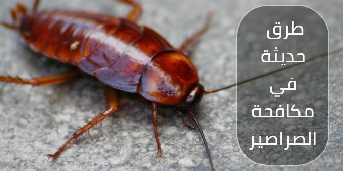 طرق حديثة في مكافحة الصراصير